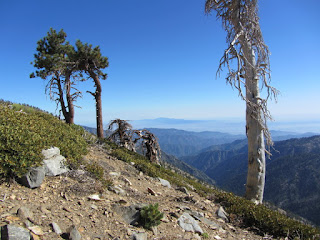 View south from Pacific Crest Trail