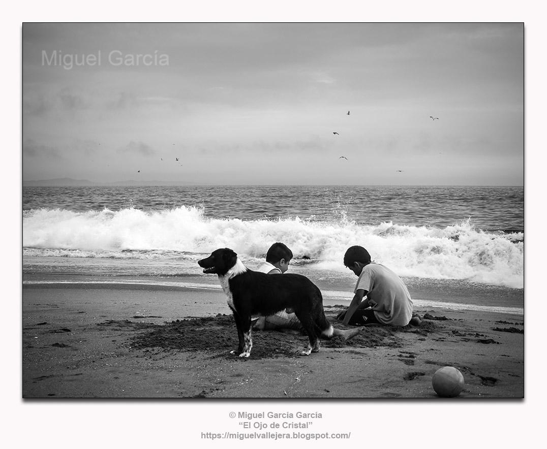 Muchachos jugando en la arena con perro y pelota. Playa Arica, Lurín - Perú