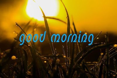 good morning sunshine images