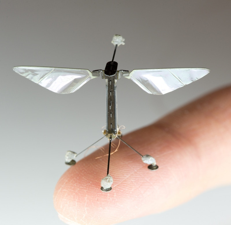 Meet The Havard's Autonomous Flying Microrobots (RoboBees)