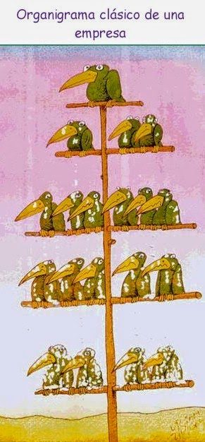 "Chistes grafico - humor: ""Organigrama empresa"""