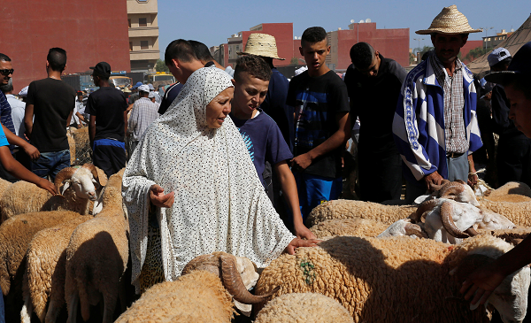 القدرة الشرائية و الوضع الوبائي يحرم عائلات من أضحية العيد بالشلف