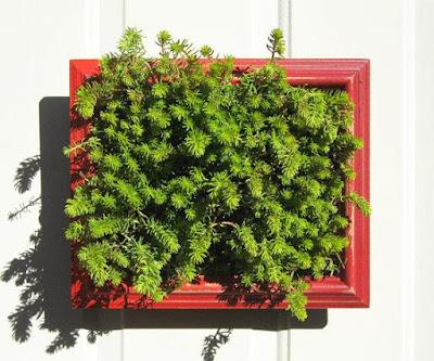 Vertical Planter Frame