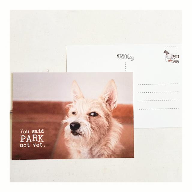 Beterschap hond You said park not vet cadeau kaart