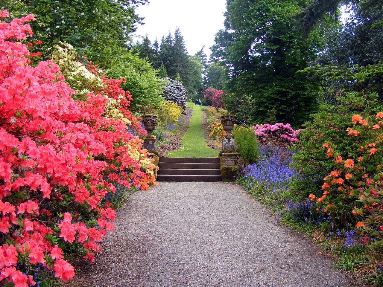 Fall Flower And Gardening Checklist Part 2