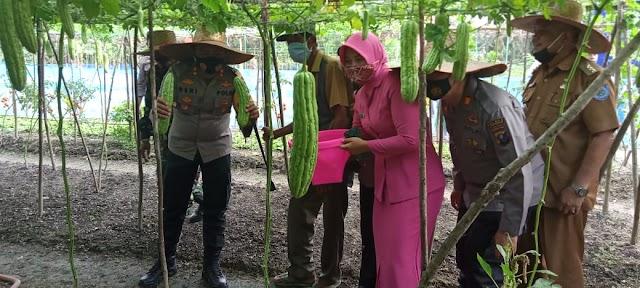 Kapolres Labuhanbatu Apresiasi Kapolsek Panai Tengah Terkait Launcing Kampung Tangguh