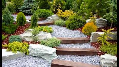Crea tu propio jardín en casa