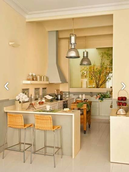 Ideas For Small Apartment Kitchens Layout 4