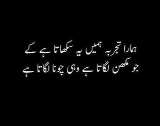 funny urdu quotes 01