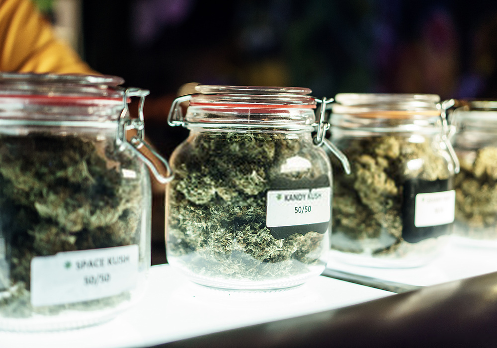 Can you make cannabis grow faster?