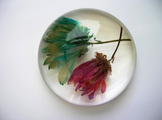 Flowers encapsulated within a paperweight