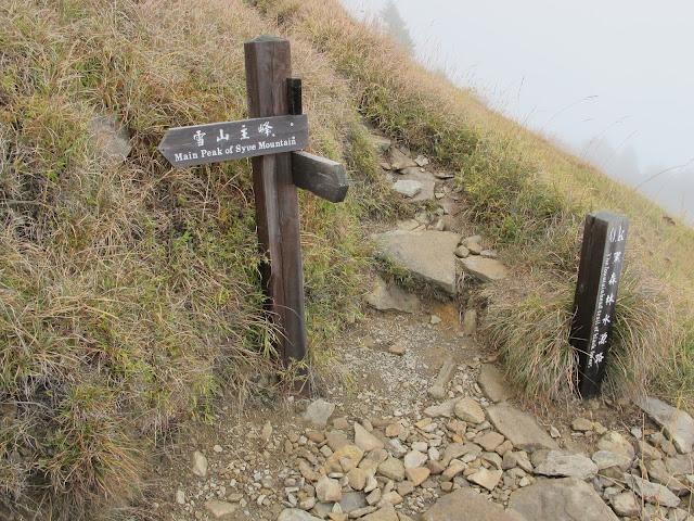 IMG 6030 - 台中登山│台灣第二高峰,雪山主峰、東峰兩天一夜攻頂!這兩天是我最難熬的一夜