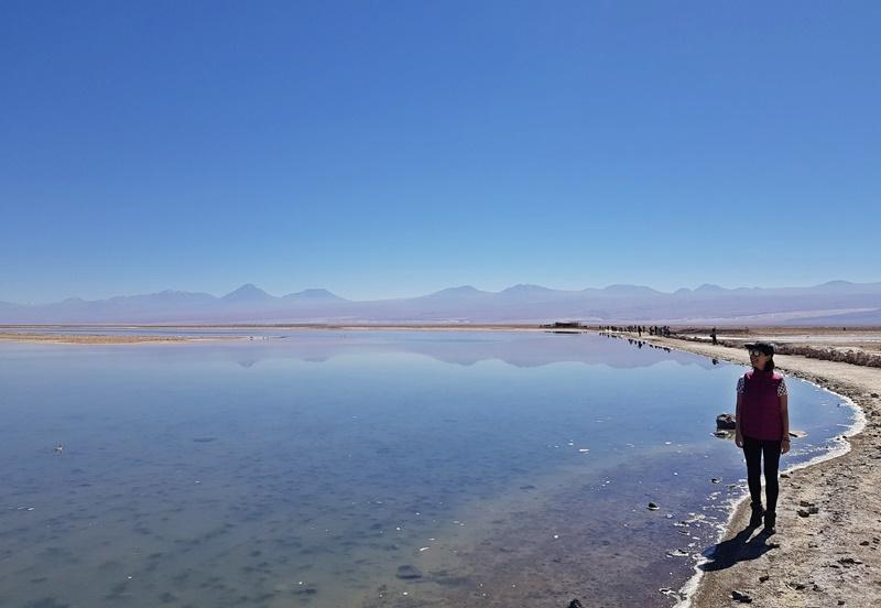 Laguna Chaxa Deserto do Atacama