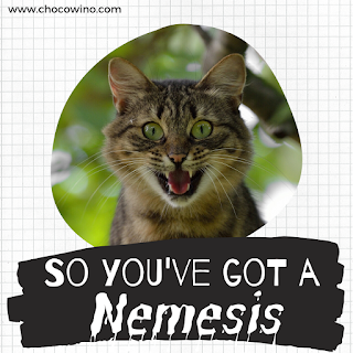 So You've Got a Nemesis ...