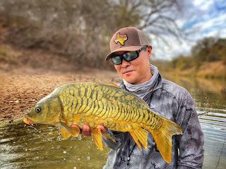 Mirror Carp, Mirror Carp on the Fly, Odom Wu, Interview with Odom Wu, Carp, Carp on the Fly, Carp Fishing in Texas, Texas Carp Fishing, Texas Fly Fishing, Fly Fishing Texas, Texas Freshwater Fly Fishing, TFFF, Pat Kellner