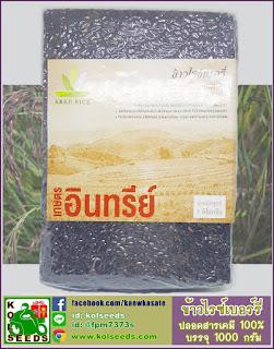 จำหน่ายข้าวไรซ์เบอร์รี่ ออแกนิค organic thai riceberry ราคาถูก