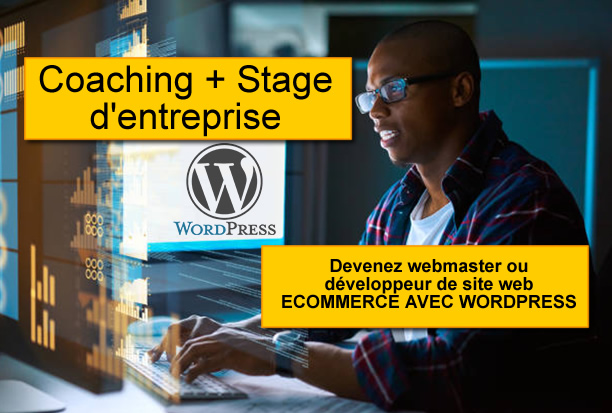 Coaching + Stage d'entreprise en CREATION DE SITE ECOMERCE AVEC WORDPRESS
