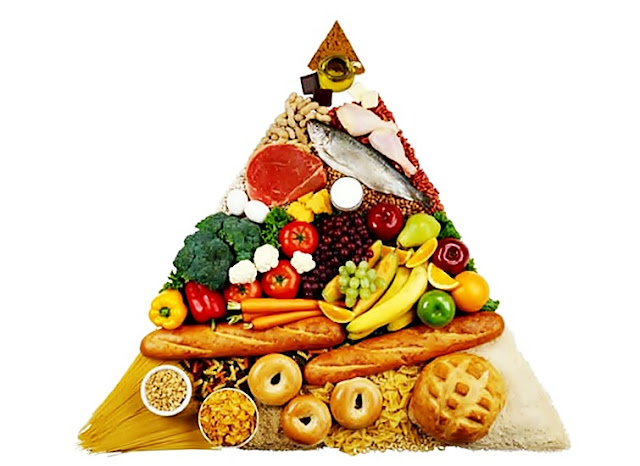 piramide alimentar 2019