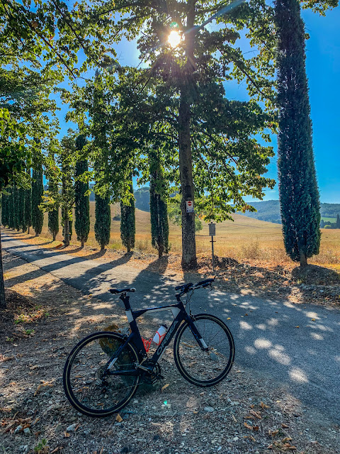 Our carbon road bike rental provided in Livorno, on the coast of Tuscany