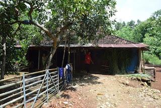 Tempat tinggal Khusni bersama keluarga.(dok. ACT DIY)