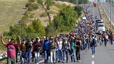 Szerbia: Ötezer lakosú településre nyolcszáz migránst költöztetnek