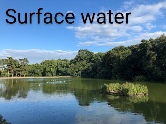 Water resources- sources, uses, importance and conservation