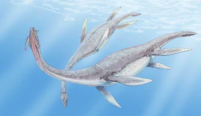 Plesiosaurus, Dianggap Mustahil Ada