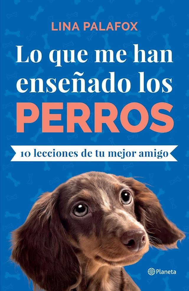 Día internacional del perro y del perro callejero...