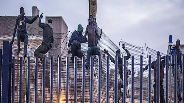 إحباط محاولة هجرة غير شرعية إلى مدينة سبتة المحتلة لمهاجرين أفارقة