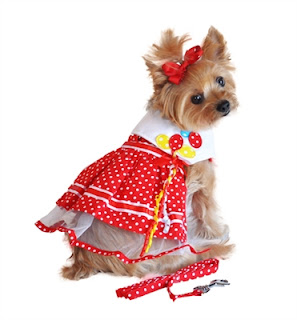 DOT BALLOON DESIGNER DOG DRESS