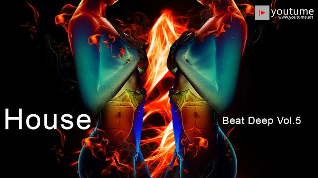 Nghệ thuật hôn mê | House - Beat Deep vol 5