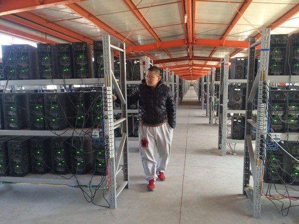 Chandler Guo - người đào Bitcoin lớn nhất Trung Quốc