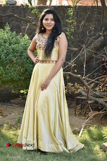 Actress Nayana Nair Stills in Long Dress at Arasakulam Tamil Movie Audio Launch  0011.jpg
