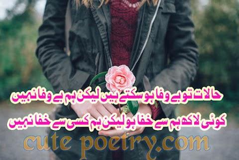 Sad Potry Halat Bewafa to Ho Sakte hein Cute poetry