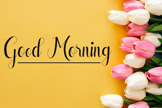 Good Morning Royal Images Download for Whatsapp Facebook19