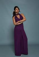Priyanka Chopra in Mesmerizing Purple Backless Deep neck Gown 32).jpg