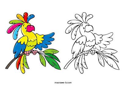 رسومات تلوين للاطفال جديدة 8