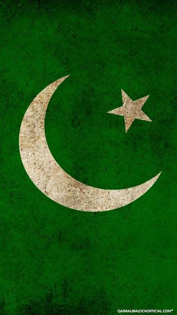 Pakistani%2BFlag%2BHoly%2BDay%2B%252810%2529