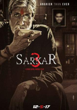 Sarkar 3 2017 DVDRip 350Mb Full Hindi Movie Download 480p Watch Online bolly4u