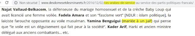 """Le racisme et l'antisémitisme du site islamiste """"Des dômes et des minarets"""""""