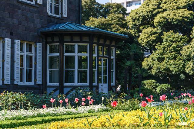 洋館とチューリップ~旧古河庭園