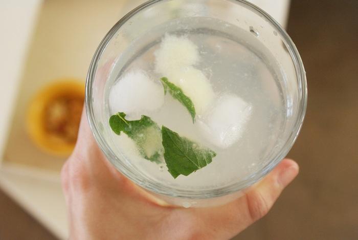 lemon mint cubes recipe ice