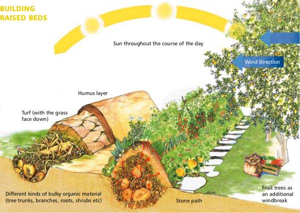 Permaculture Projects Hugelkultur