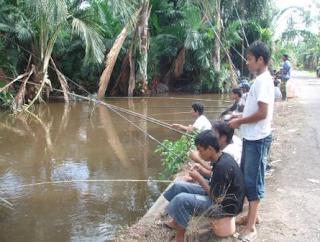 cara memancing ikan gabus