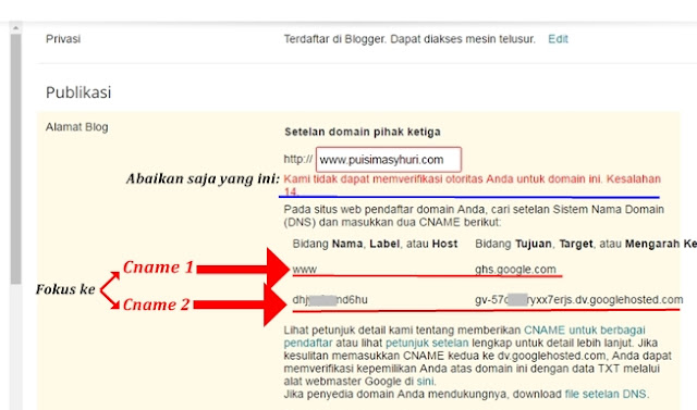 Kami tidak dapat memverifikasi otoritas Anda untuk domain ini. Kesalahan 14.