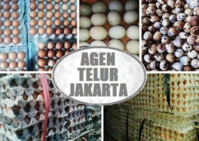agen pemasok telur ayam-bebek-puyuh Jakarta
