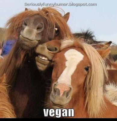 Vegan - funny goofy horses meme