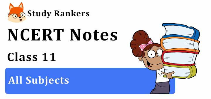 NCERT Revision Notes for Class 11