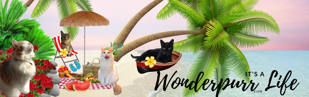 It's a Wonderpurr Life