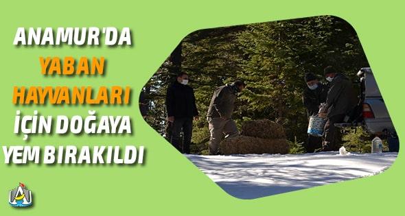 Anamur Haber,Anamur Son Dakika,Anamur Milli Parklar Şefliği,Anamur Avcılar Doğa ve Su Sporları Derneği